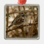 canción del pájaro ornaments para arbol de navidad