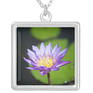 Cancun, Mexico Silver Plated Necklace