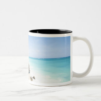 Cancun, Quintana Roo, Mexico - Ruins on a hill Two-Tone Coffee Mug