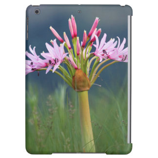 Candelabra Flower (Brunsvigia Radulosa), Umgeni iPad Air Cover