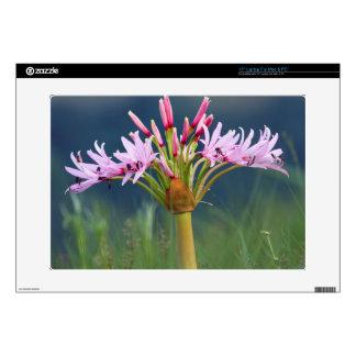 "Candelabra Flower (Brunsvigia Radulosa), Umgeni Skin For 15"" Laptop"