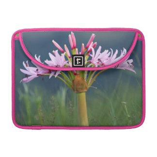 Candelabra Flower (Brunsvigia Radulosa), Umgeni Sleeve For MacBook Pro
