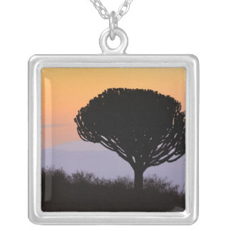 Candelabra Tree silhouetted at sunrise, Silver Plated Necklace