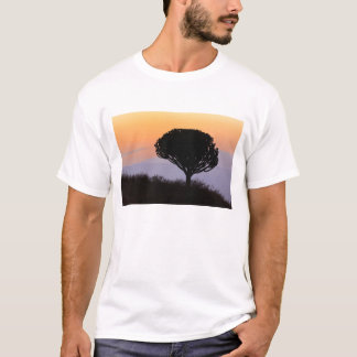 Candelabra Tree silhouetted at sunrise, T-Shirt