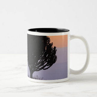 Candelabra Tree silhouetted at sunrise, Two-Tone Coffee Mug