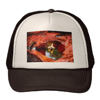 Candlescape Reflections Trucker Hat