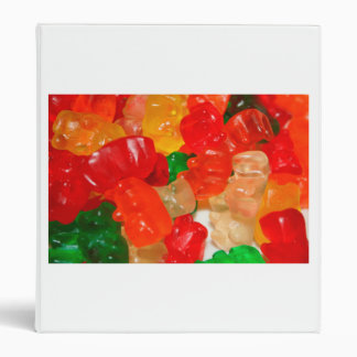 candy bears colorful red green food sweets 3 ring binder