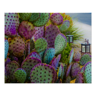 Candy Cactus Posters