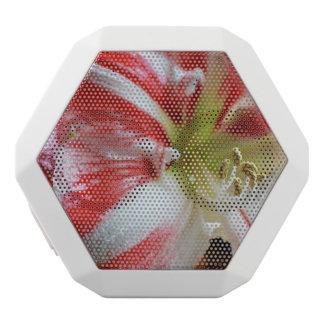 Candy Cane Amaryllis White Boombot Rex Bluetooth Speaker