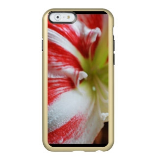 Candy Cane Amaryllis Incipio Feather® Shine iPhone 6 Case