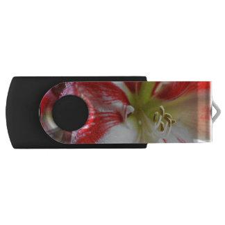 Candy Cane Amaryllis Swivel USB 2.0 Flash Drive