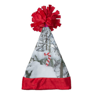 Candy Cane Decoration on a Snow Covered Branch Santa Hat