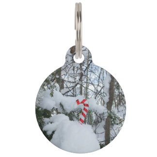 Candy Cane Outside Decoration Pet ID Tag
