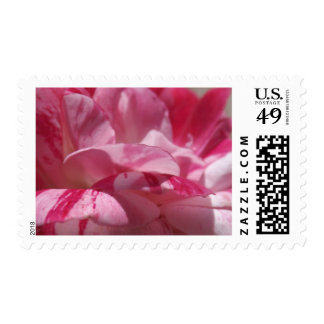Candy Cane Petals Postage Stamps