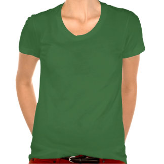 Candy Cane Snowflake - Woman's Scoop Neck T-shirt