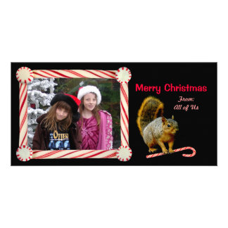 Candy Cane Squirrel Holiday Photo Card
