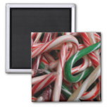 Candy Canes Christmas Holiday White Green and Red Magnet