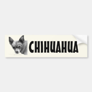 Candy, Chihuahua Bumper Stickers
