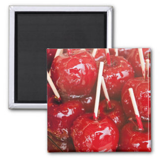 Candy coated fruit at the Stuttgart Beer Festiva 2 Inch Square Magnet