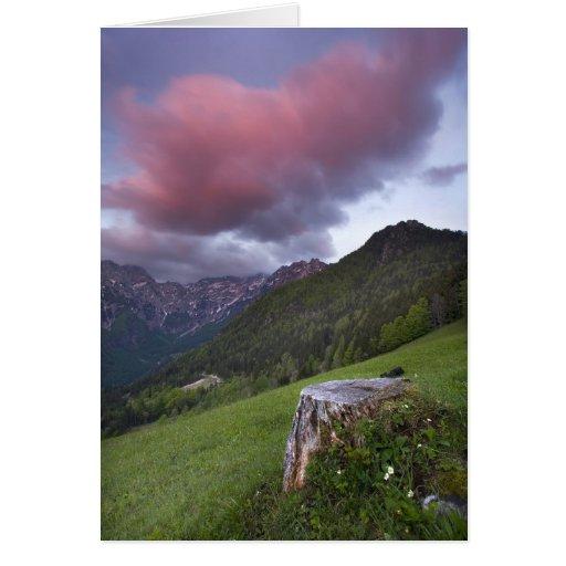 Candy Floss Cloud Card