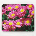 Candy Flowers Mouse Mats