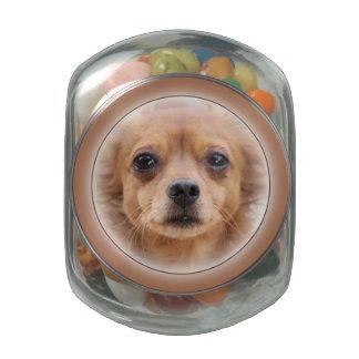 Candy Jar - Animals Glass Candy Jars