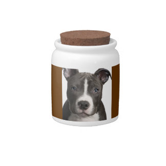 Candy jar with Pitbull picture
