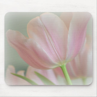 Candy Pink Tulip Mouse Pad