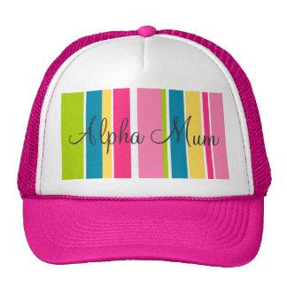 Candy Stripe Cap Mesh Hat