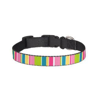 Candy Stripe Dog Collar