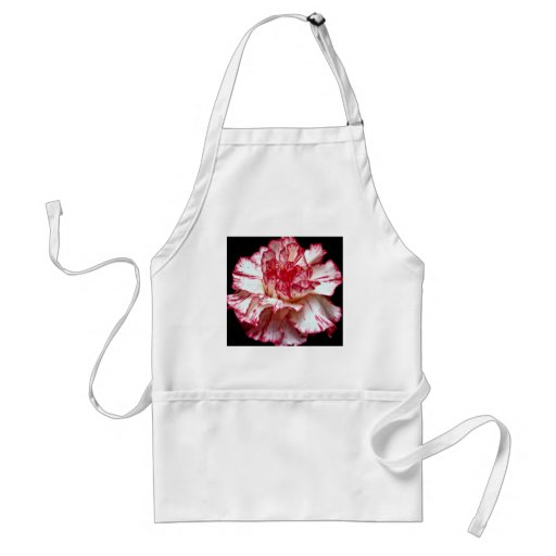 Candy-striped carnation  flowers aprons
