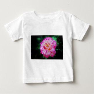 Candy striped pink rose shirt