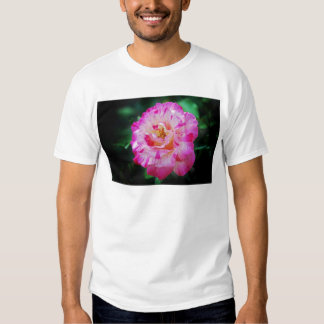 Candy striped pink rose t-shirt