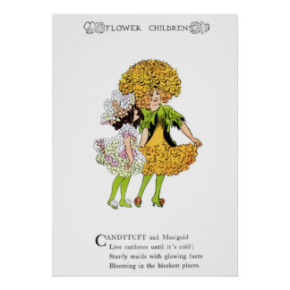 Candytuft and Marigold Print