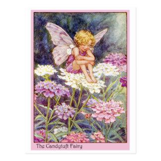 Candytuft Fairy Post Card