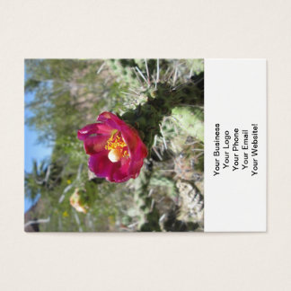 Cane Cholla Desert Flower Business Card