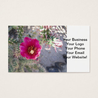Cane Cholla Flower Purple Business Card