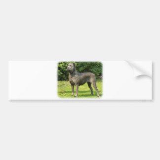 Cane Corso 8R056D-05 Bumper Sticker