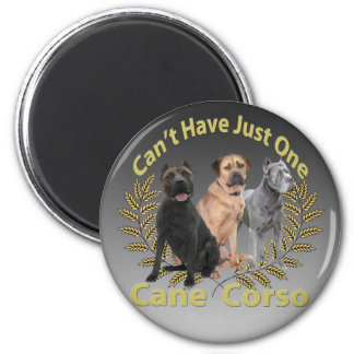 Cane Corso Can't Have Just One 2 Inch Round Magnet