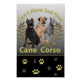 Cane Corso Can't Have Just One Posters and Prints