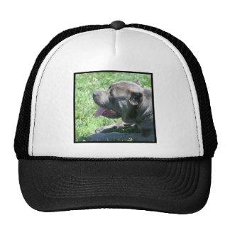 Cane Corso cap Trucker Hat