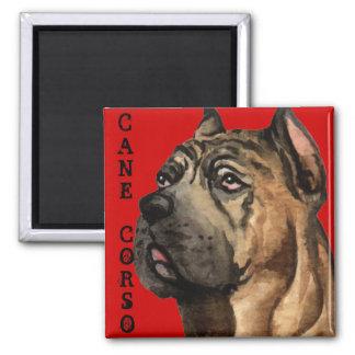 Cane Corso Color Block Magnet