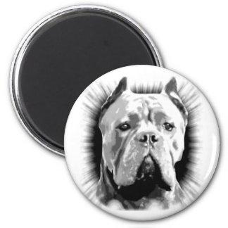 Cane Corso Dog Magnet