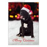 Cane Corso dog santa hat custom Christmas Card