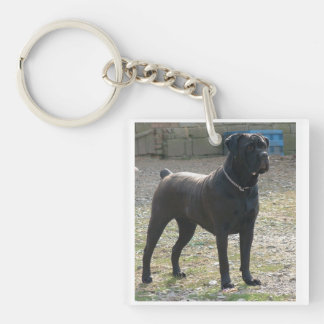 cane corso full.png keychain