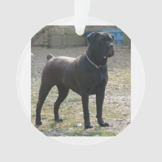 cane corso full.png ornament