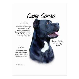 Cane Corso History Design Postcard