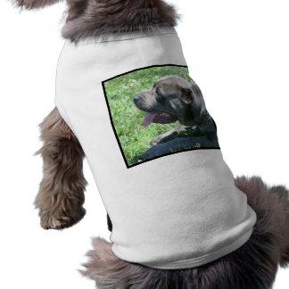 Cane Corso Pet T-shirt