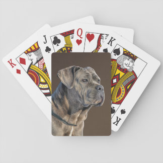Cane Corso Playing Cards