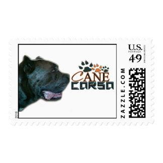 Cane Corso Postage(P) Postage